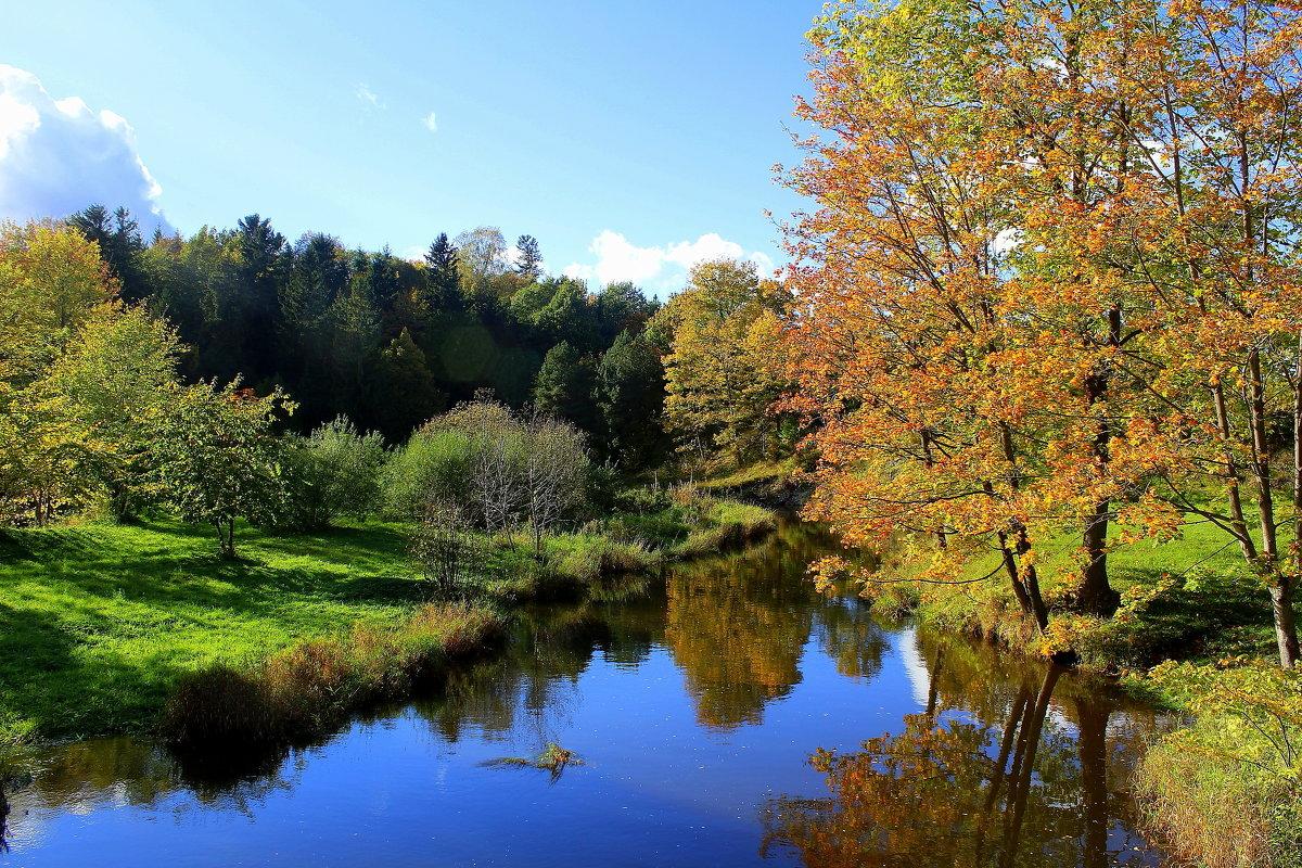 Река Тойла,Эстония - Marina Pavlova