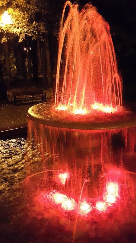 Парковый фонтан - Длинный Кот