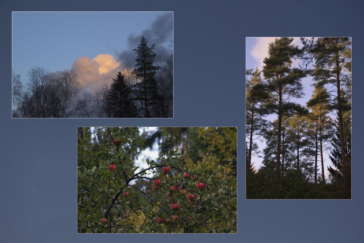 Осенняя природа - Aнна Зарубина