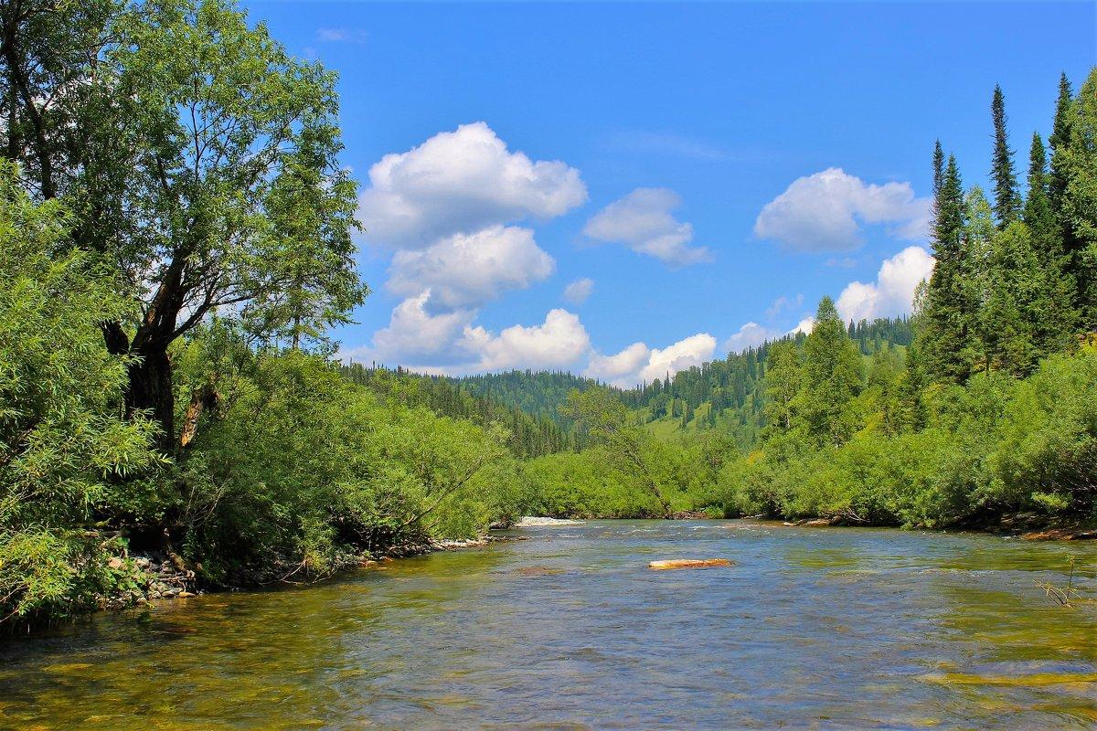 Река зелёные берега - Сергей Чиняев