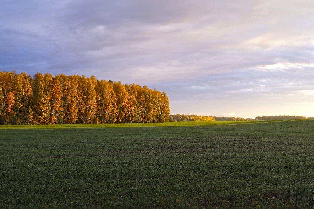 Золотая осень - Алексей Логинов