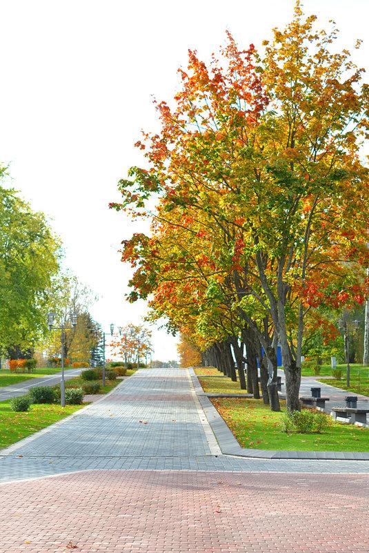 Осень - Ванда Азарова