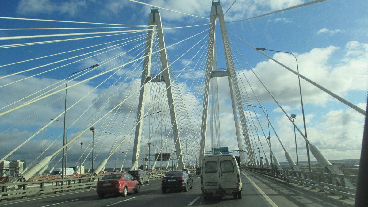 Вантовый мост - Агриппина