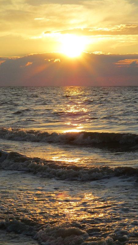 Азовское море, Ейск, сентябрь... - Владимир Павлов