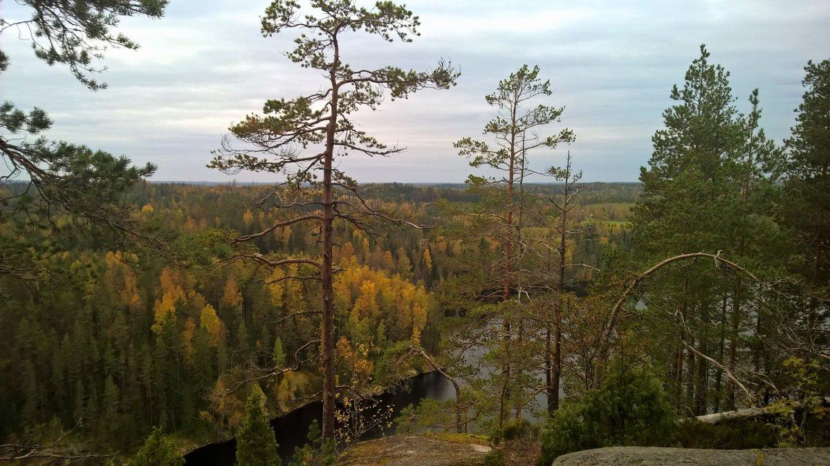 Южная Финляндия - Марина Домосилецкая