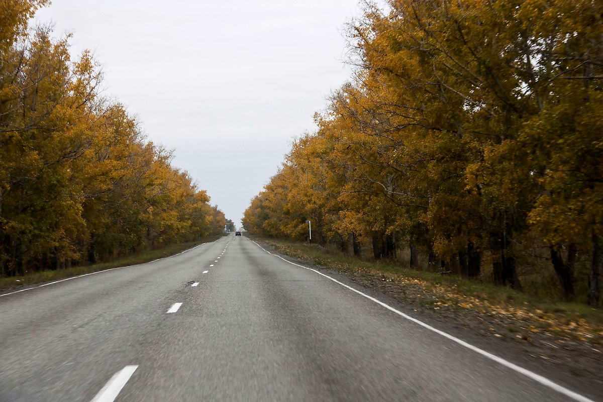 По  дороге  в  Абазу - Виктор