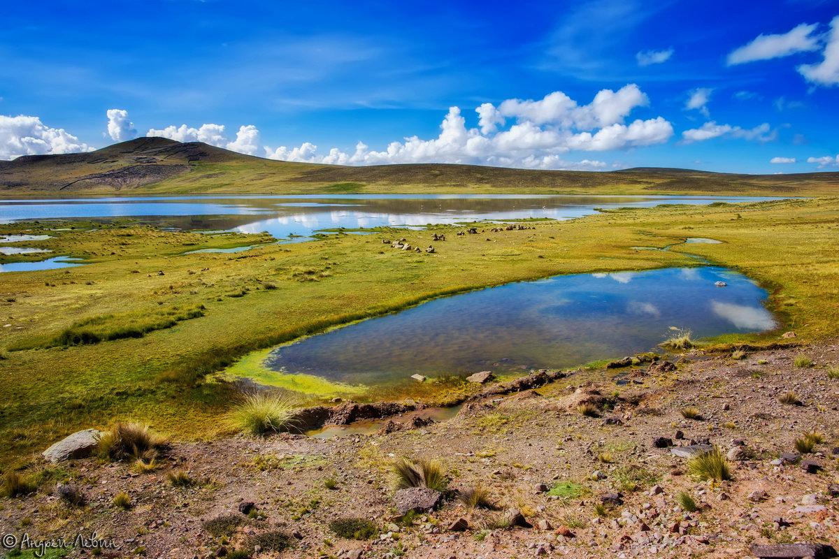 Перу. Высокогорье Андийских Кордильер - Андрей Левин