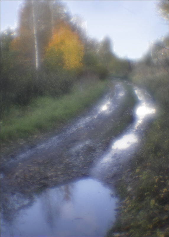 Мокро - galina bronnikova