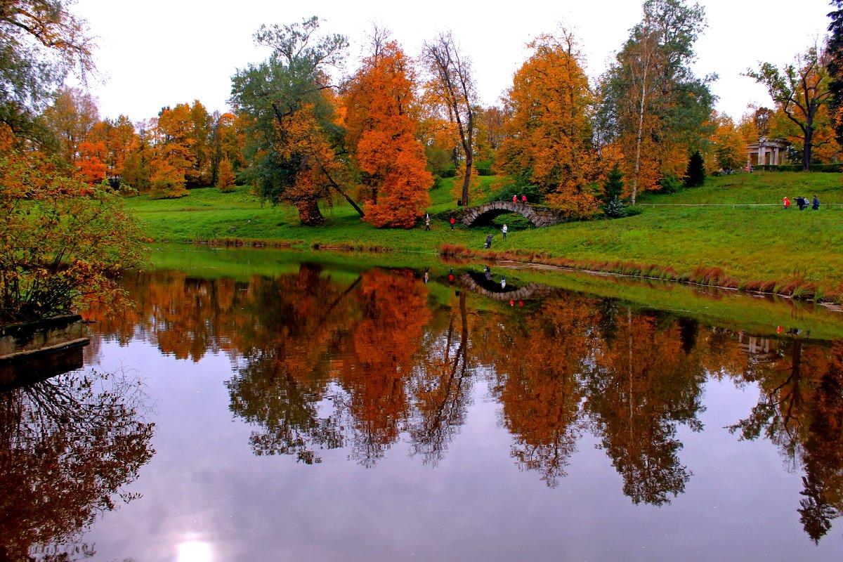 золотая осень прекрасна - анастасия артемьева