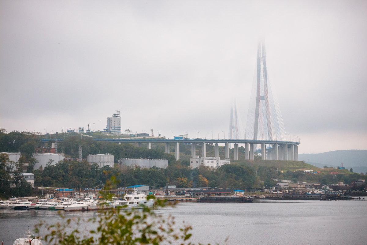мост на остров Русский - Александр Чупин
