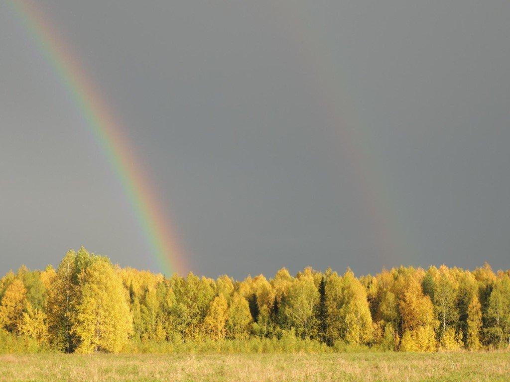 Осннняя радуга - Ольга Тумбаева