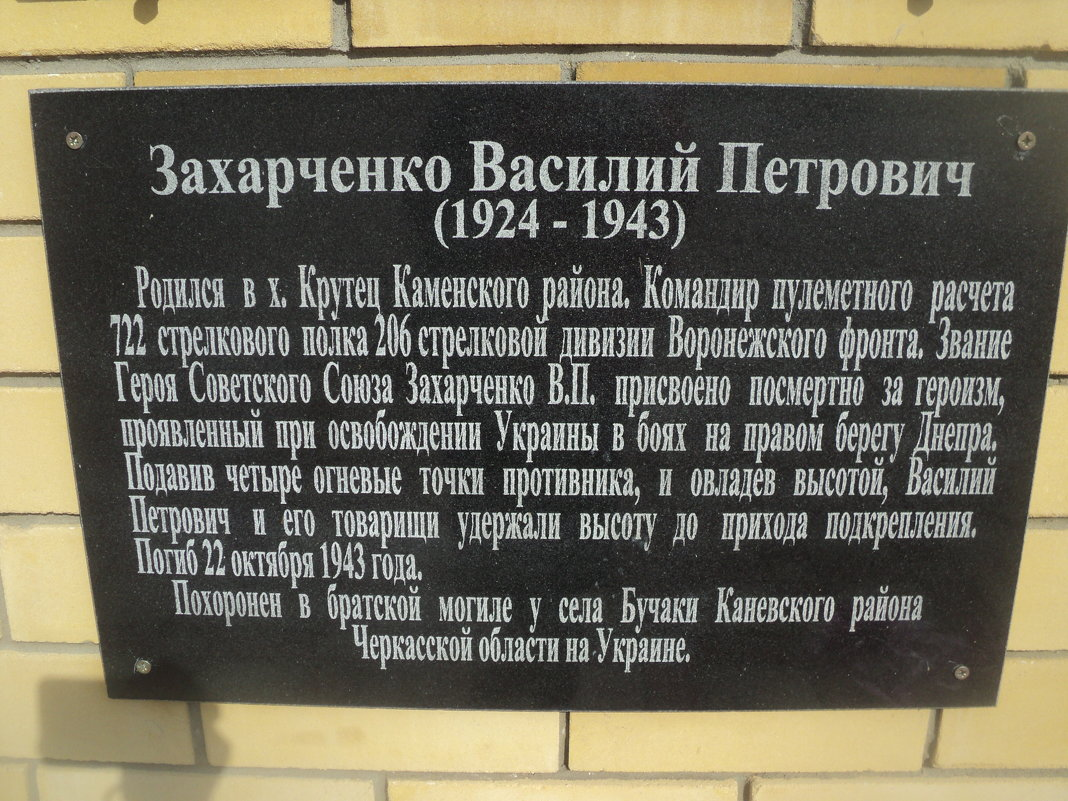 Каменка Воронежская область - Ольга Кривых