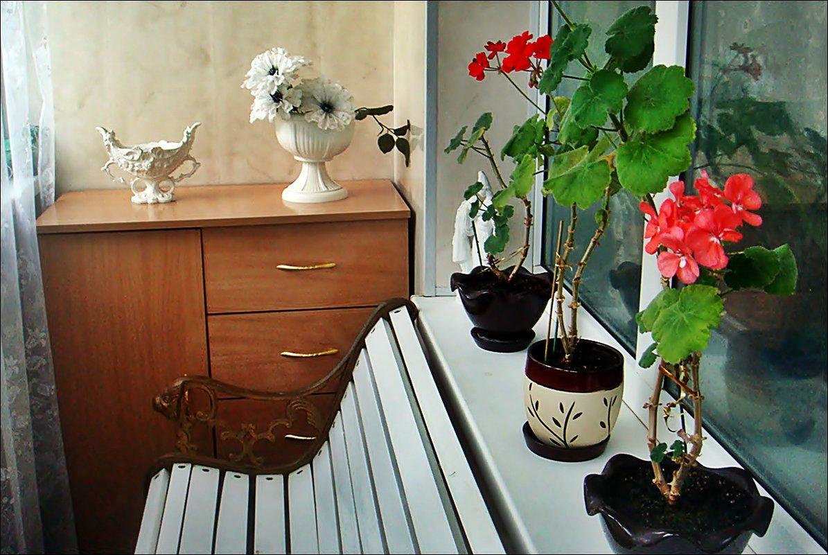 На моём балкончике - Нина Корешкова