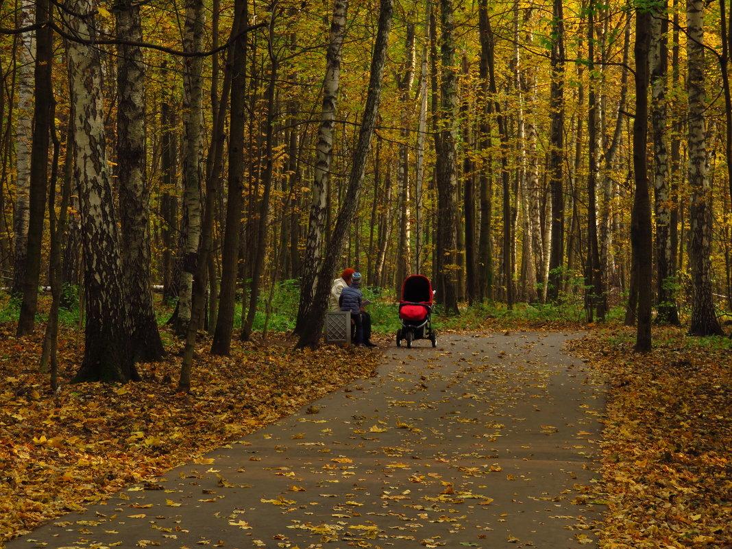 Осенние будни парка - Андрей Лукьянов