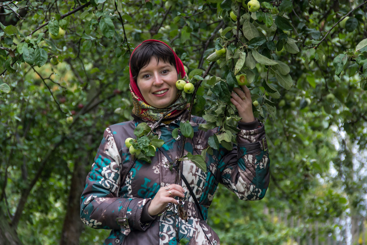 Яблоки в Суздале. - Roman В