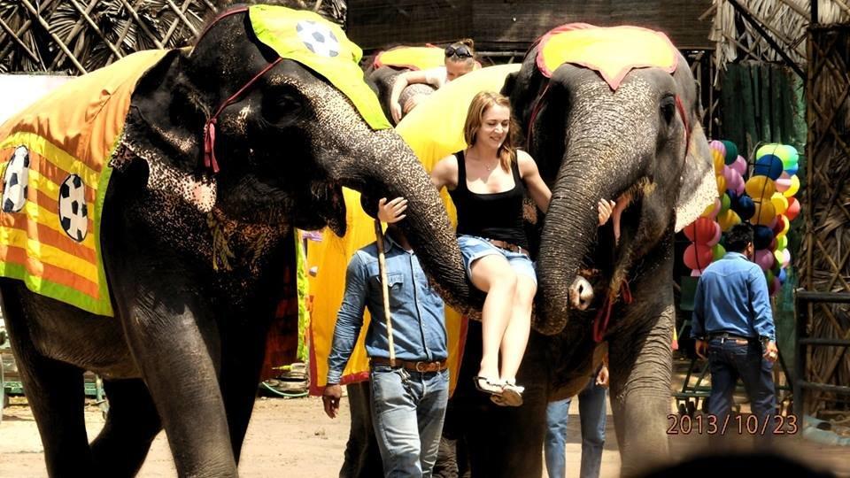 слоны - Таня
