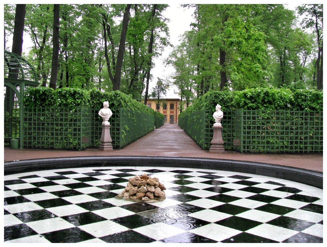 Летний сад в дождь - Наталья