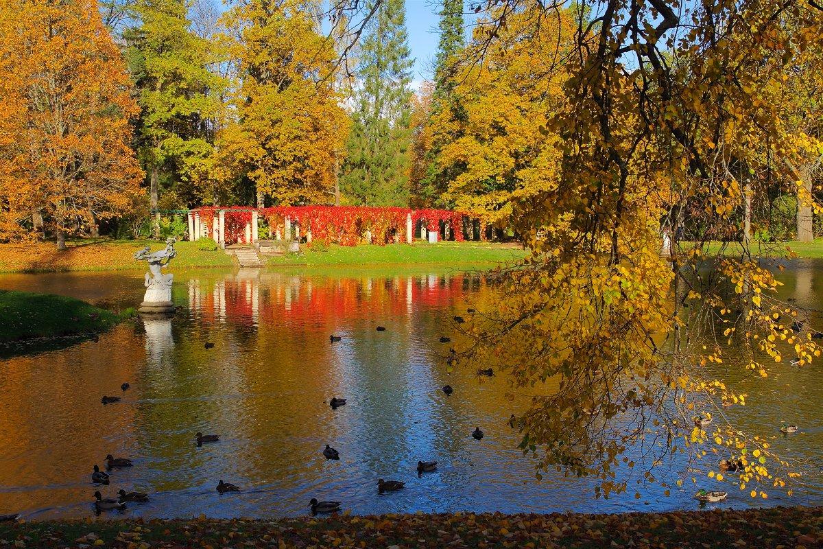 Осень в Ораниенбаум - Михаил ЯКОВЛЕВ