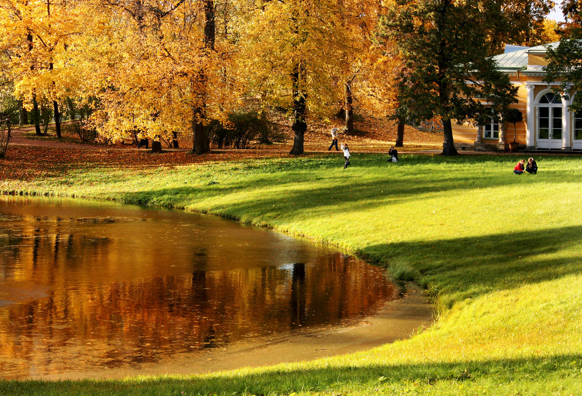 Осеннее настроение...солнечное - Ирина Румянцева