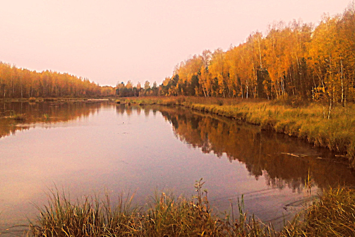 осень... - александр дмитриев