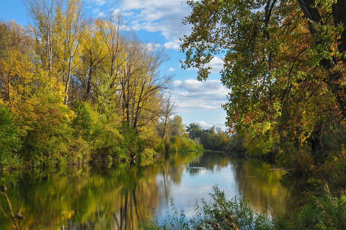 Осенний пейзаж на Деме - Сергей Тагиров