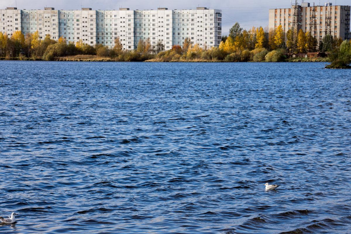 Городской пейзаж - Светлана Ку