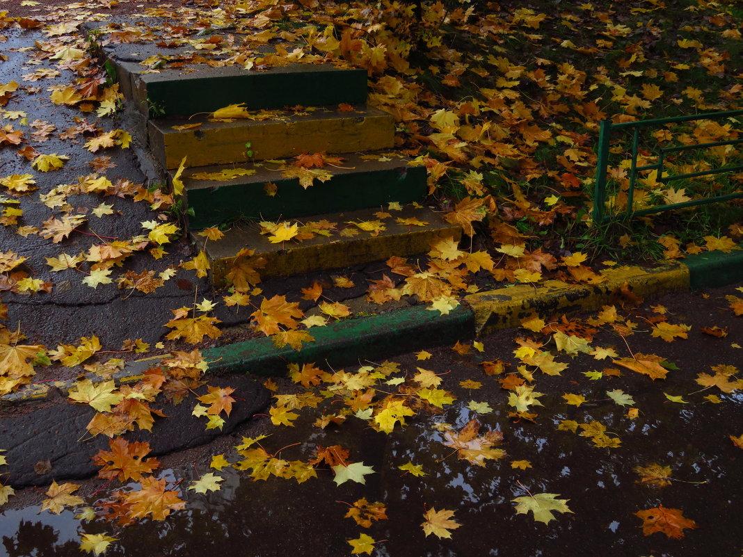 Осень в самом соку - Андрей Лукьянов