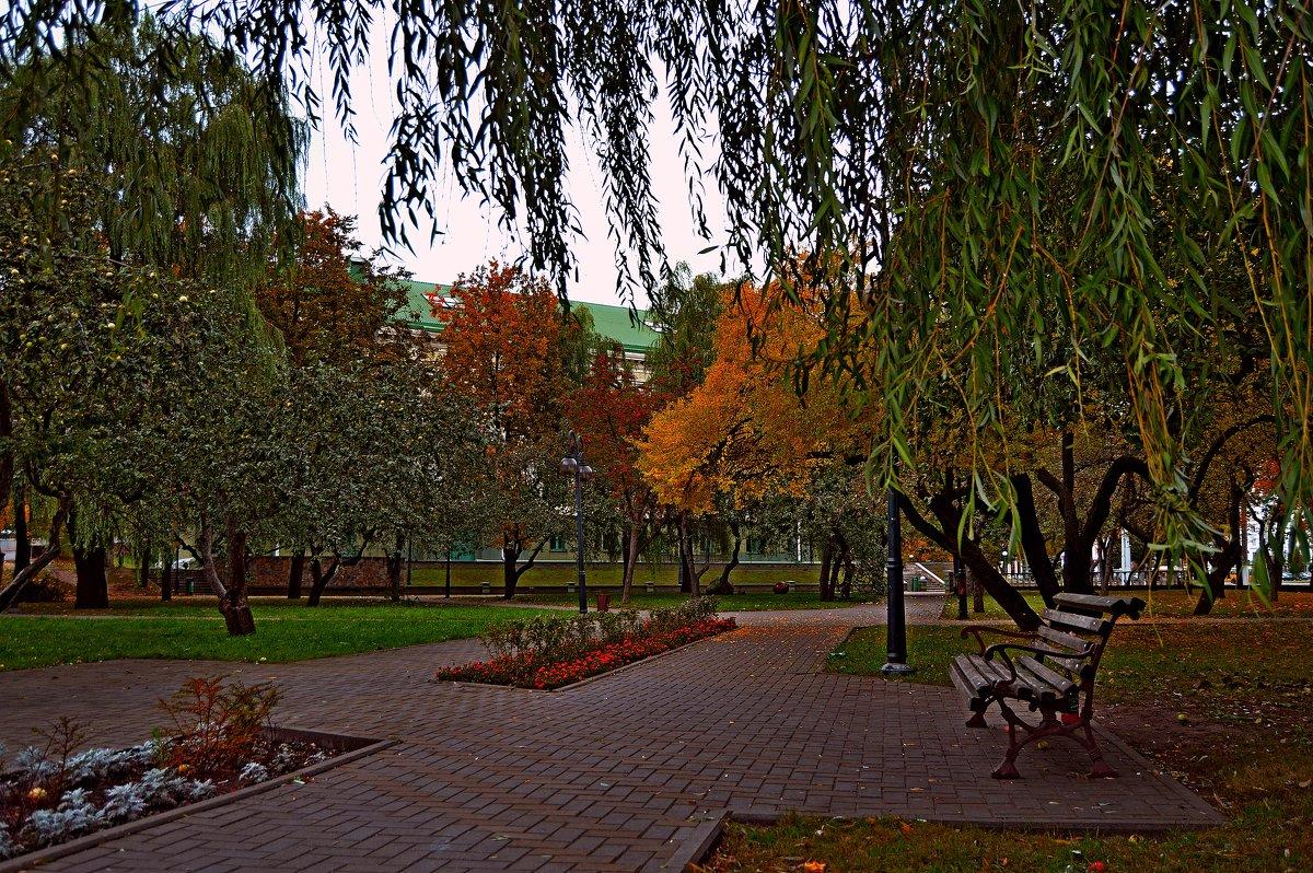 В осеннем парке(2) - Vladimir Semenchukov