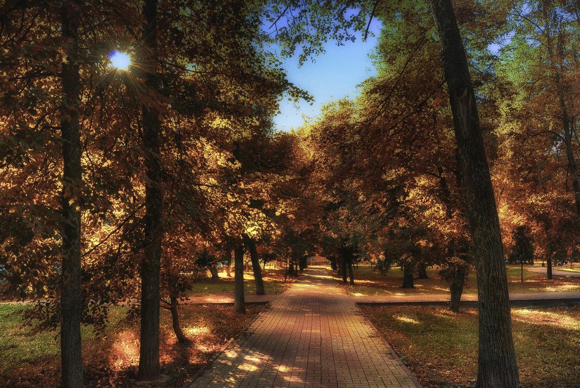 Осенний парк играет красками - Ирина Falcone