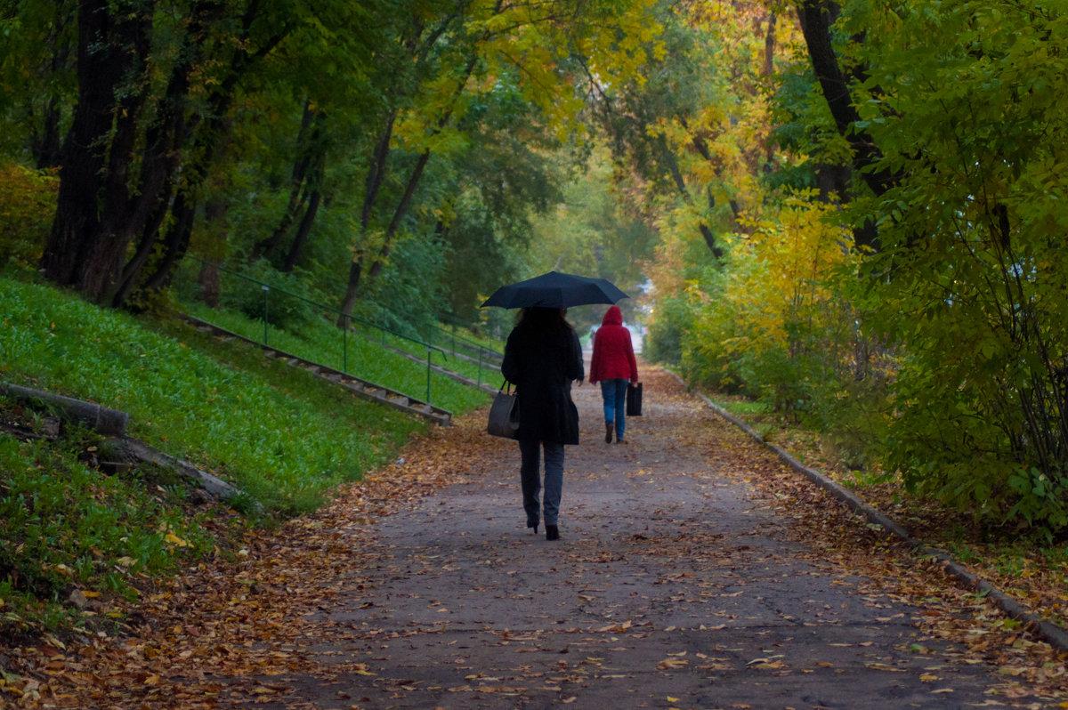 Обычная роскошная городская осень - Albina