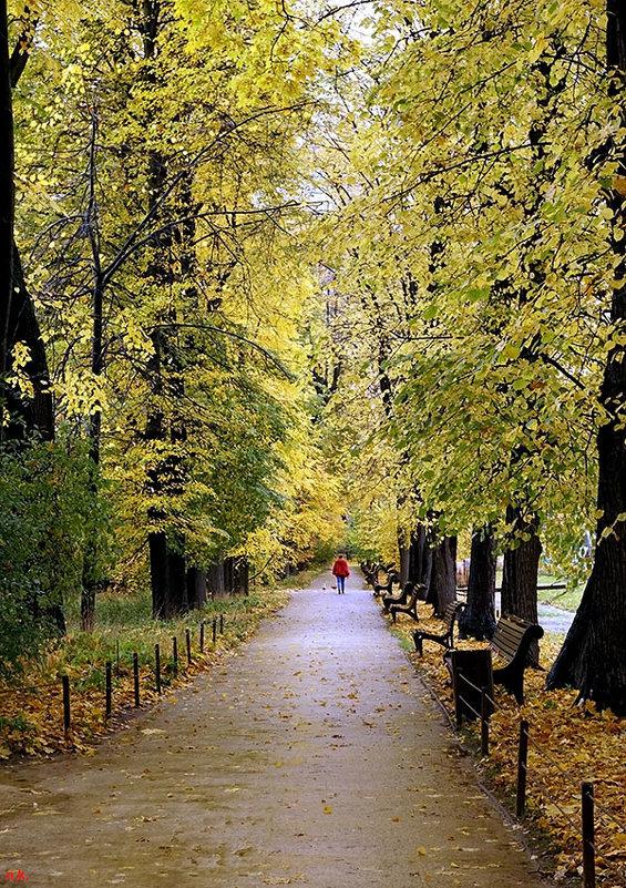 Золотая осень ... - Лариса Корженевская