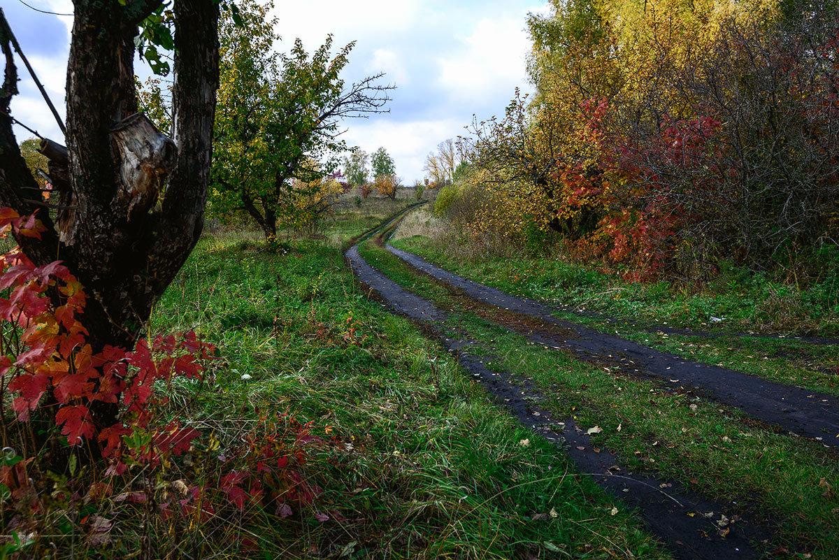 Дорога в осень... - Влад Никишин
