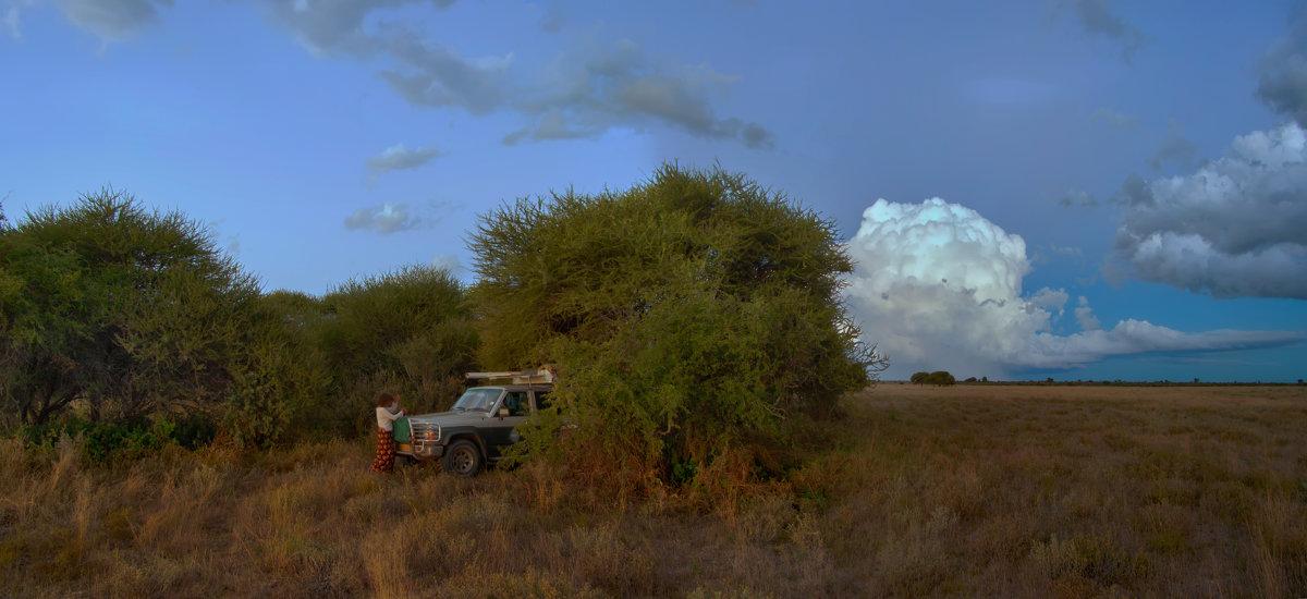 виды Калахари - svabboy photo