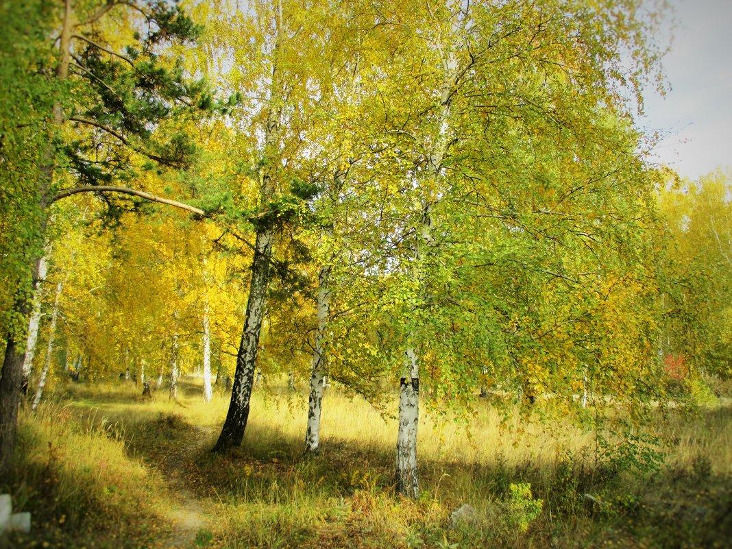 Осень-золотая пора. - Valentina