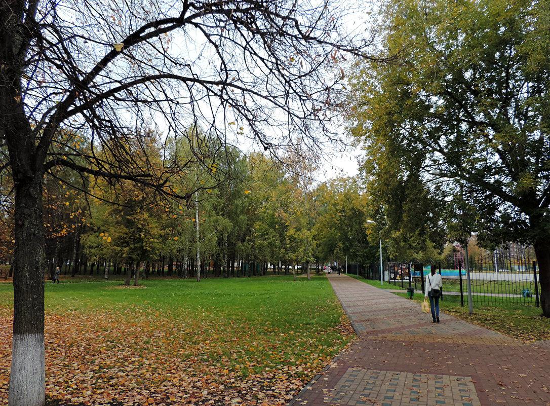 В парке. - bemam *