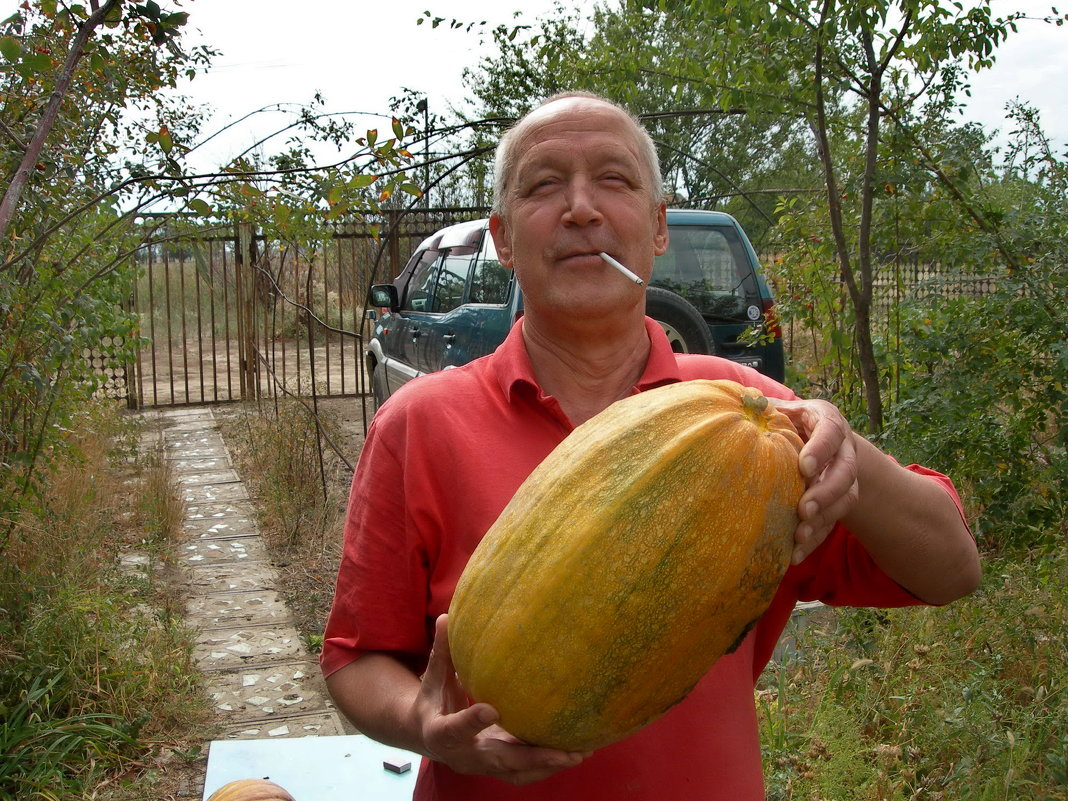 урожай.... - Murat Bukaev