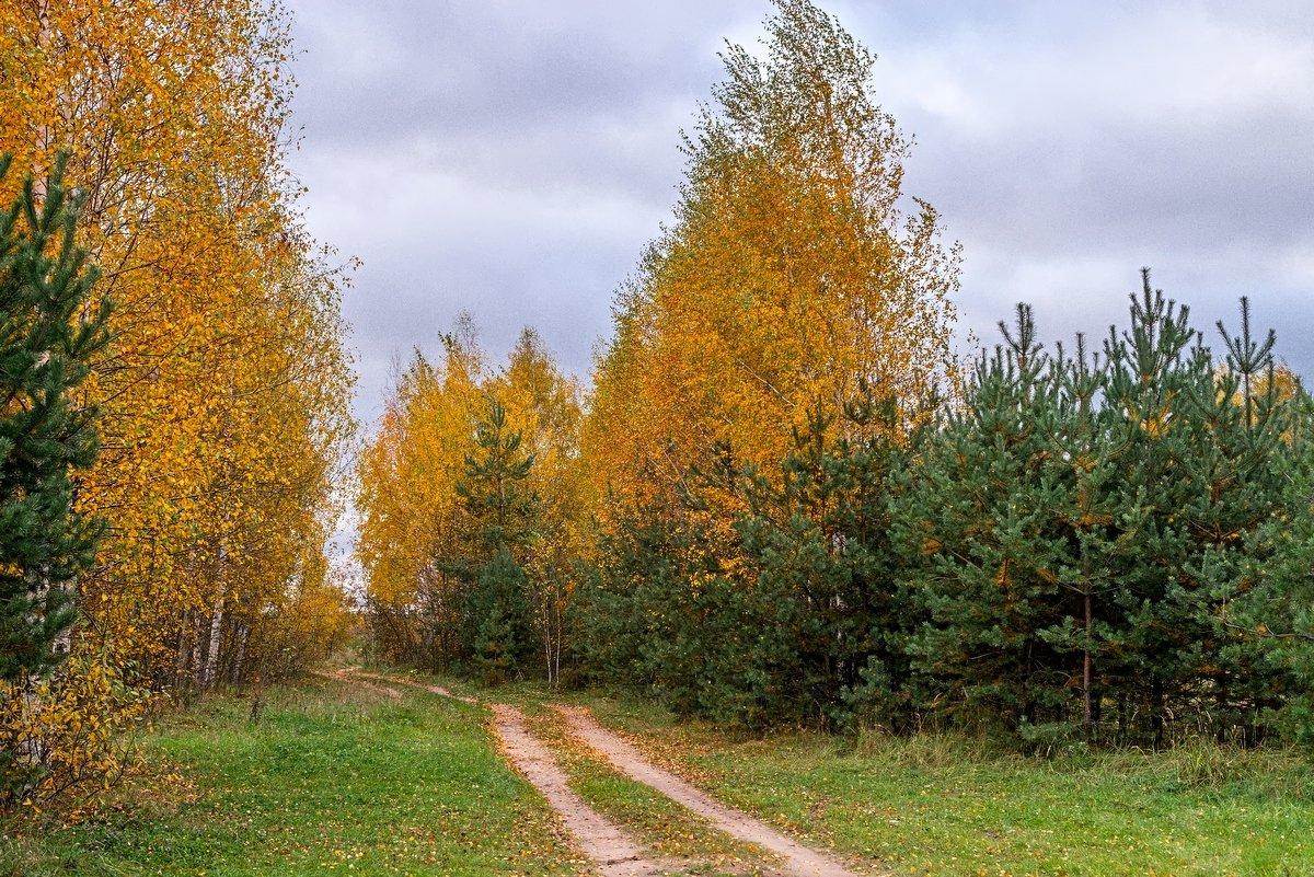 Осень - Юрий Бичеров