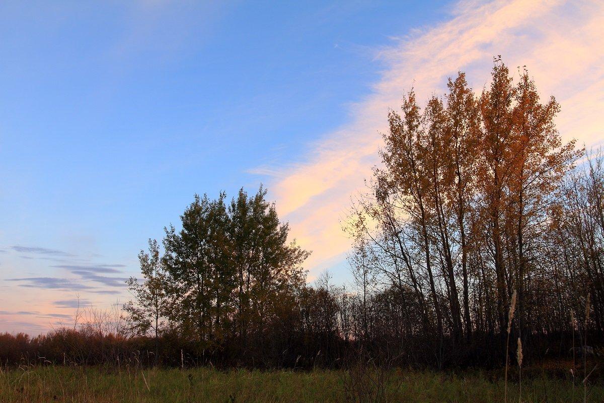 Осеннее утро на нашей северной земле - Виктор Коршунов
