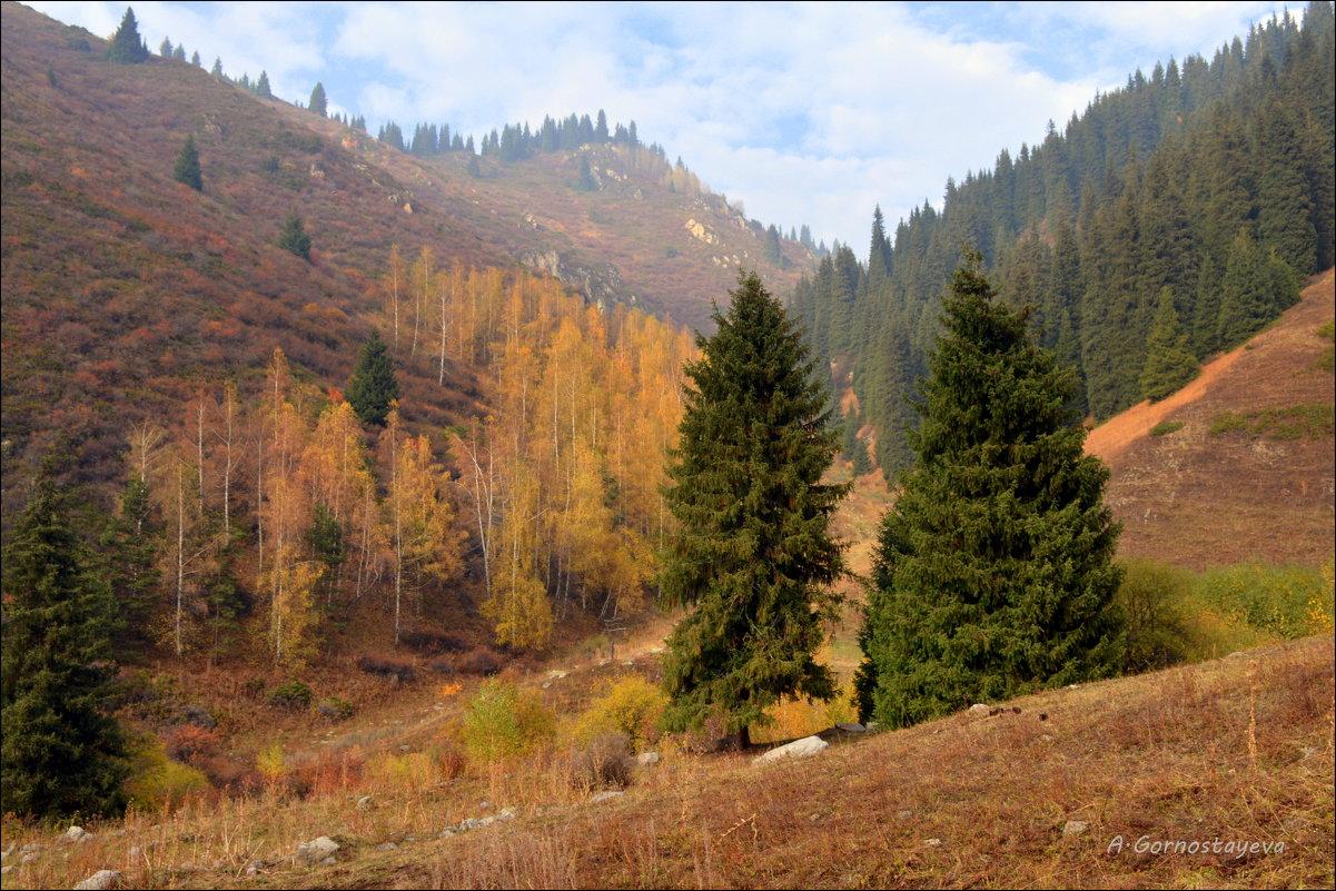 Осень в горах. - Anna Gornostayeva