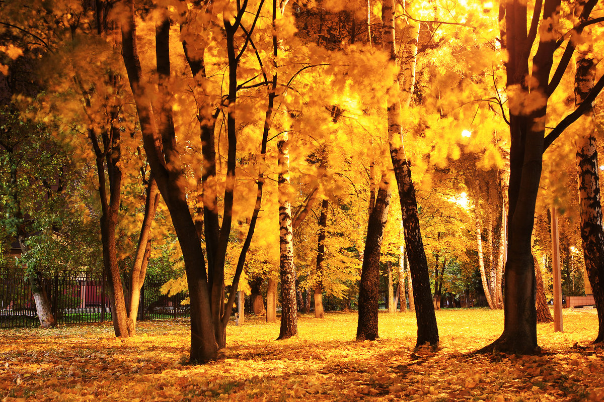 Осенний вечер. - Иван