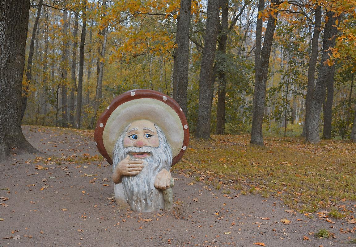 Очень странный лес (здесь грибы с глазами) - Наталия П