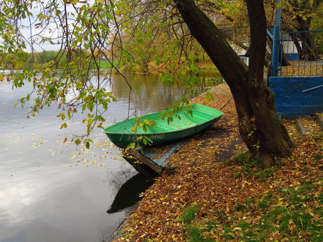 лодка виноградная