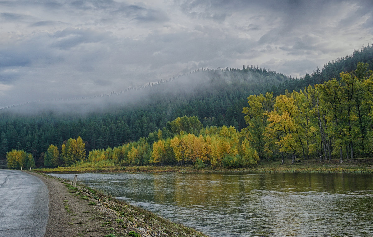 Утро туманное - Ольга