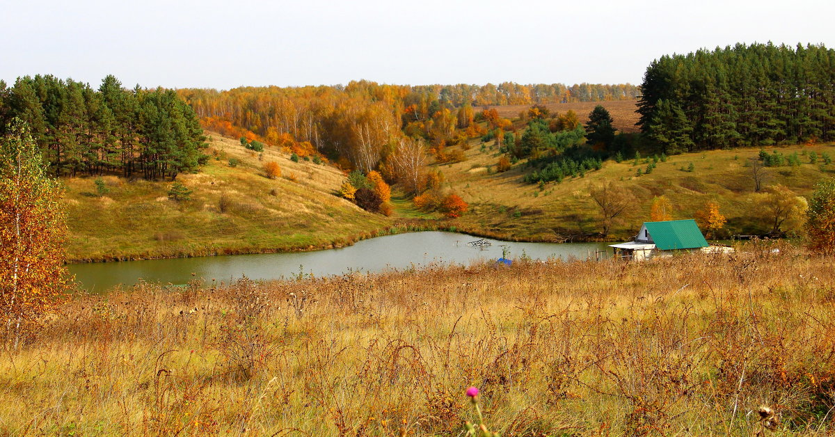 Осень. - Борис Митрохин