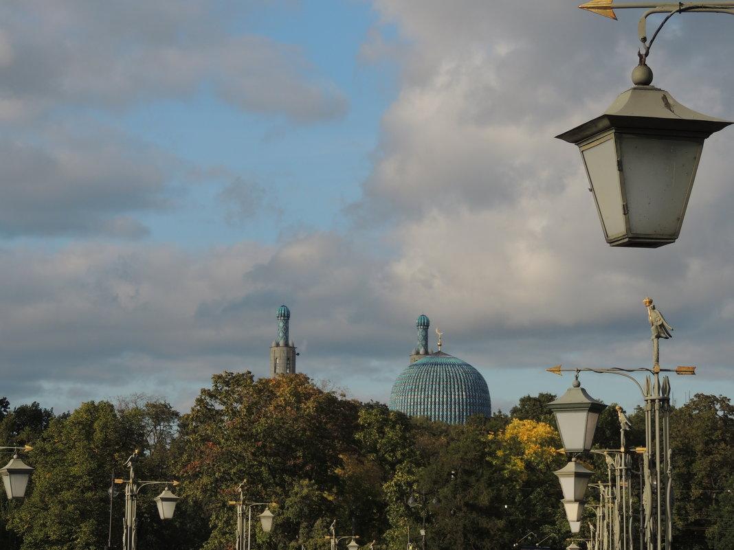 Вид на Соборную мечеть СПб - Евгения Чередниченко