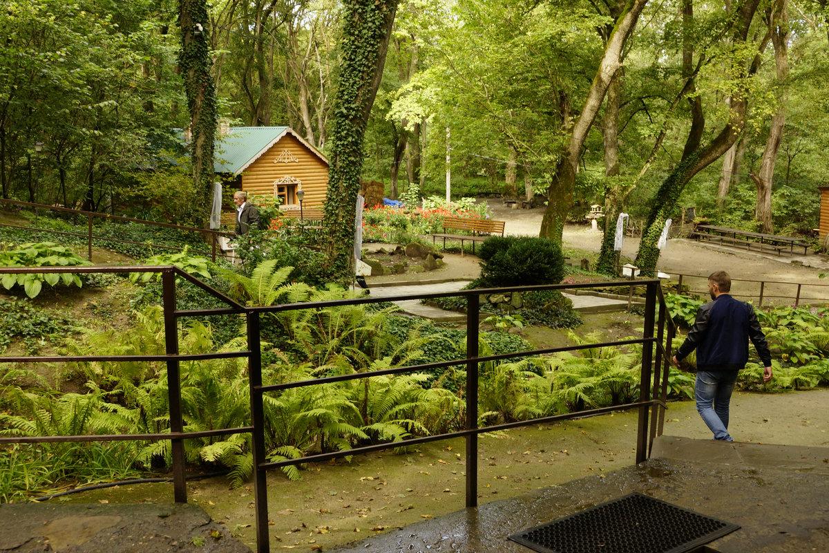 Заповедный парк - Наталия Сарана