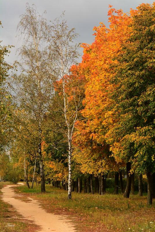 Вот и Осень! - Paparazzi