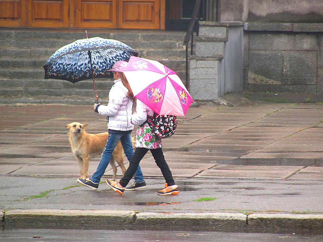 Хочешь под зонтик? - super-krokus.tur ( Наталья )