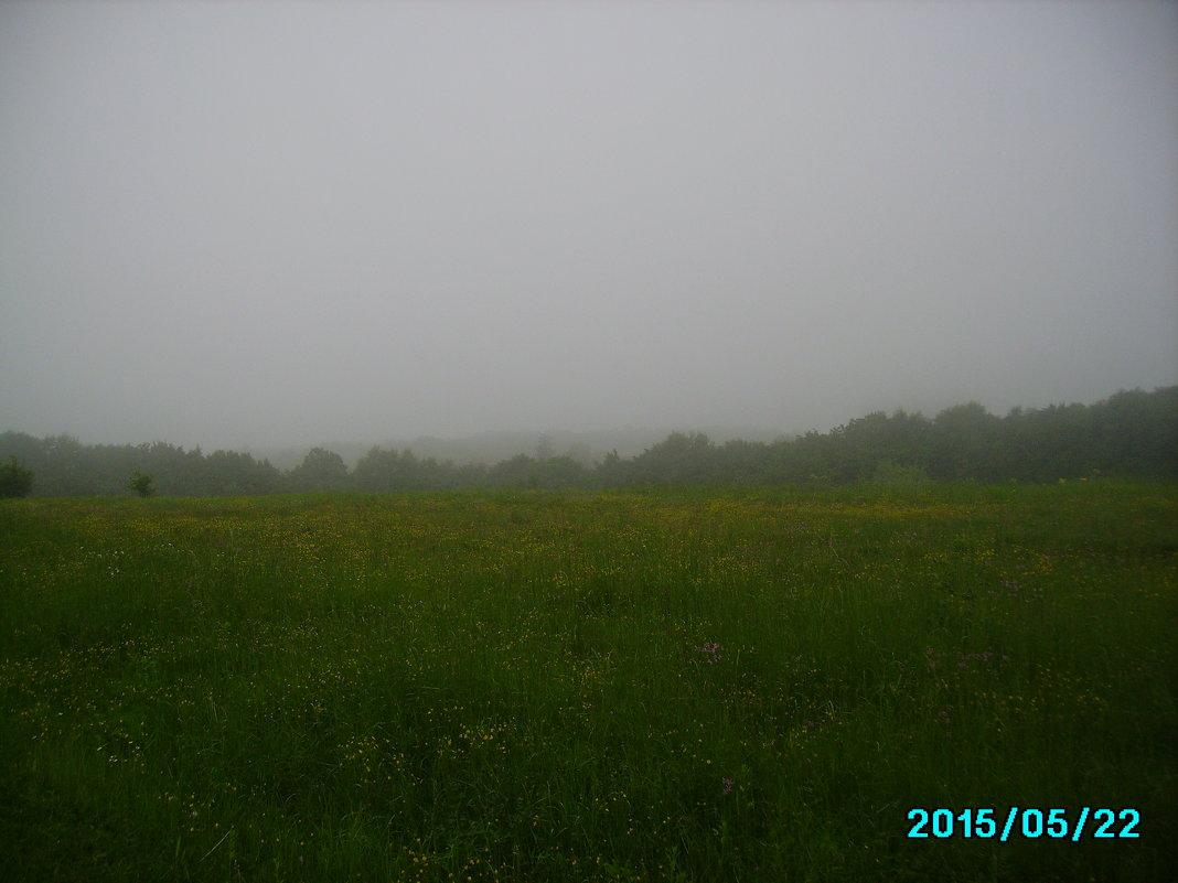 Утро  в   Крылосе - Андрей  Васильевич Коляскин