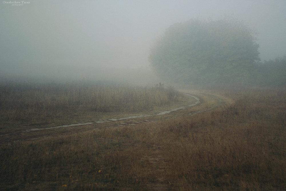 туман - Taras Oreshnikov